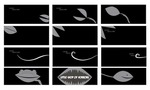 Storyboard, Title Sequence